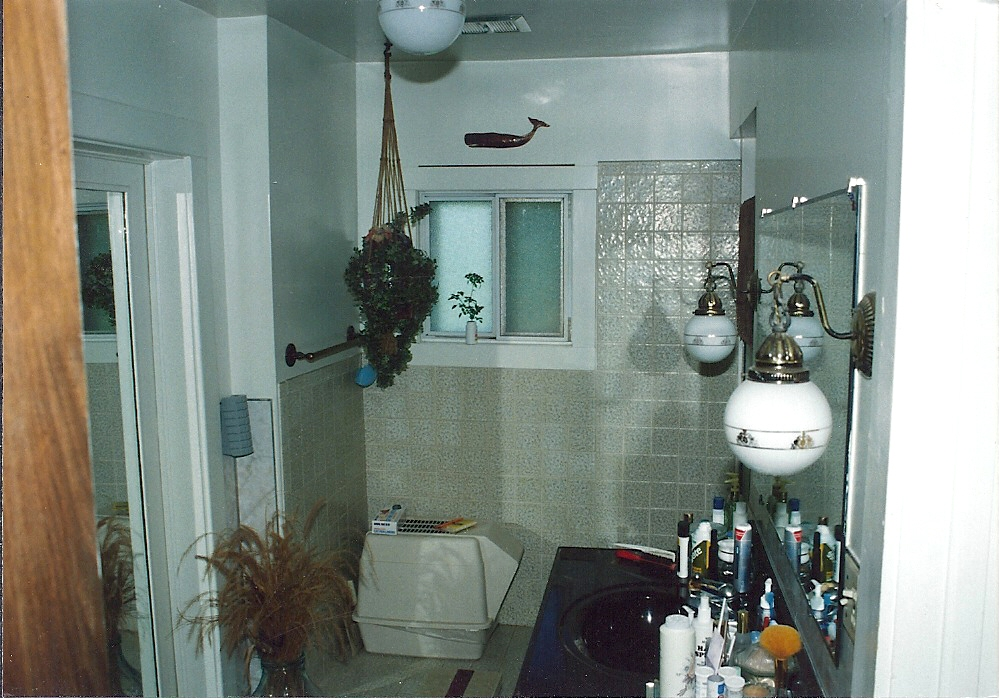 Needed Bathroom Remodel