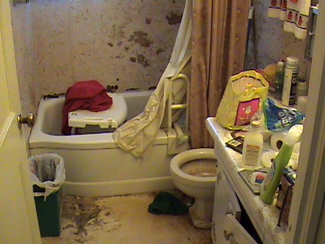 Heath Hazard Bathroom
