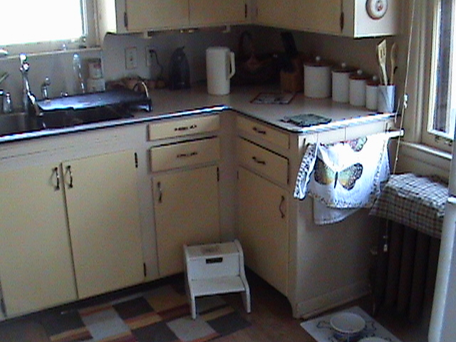 Kitchen Cabinets Before Remodel