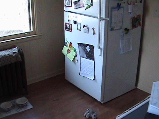 Kitchen Fridge Before Remodel