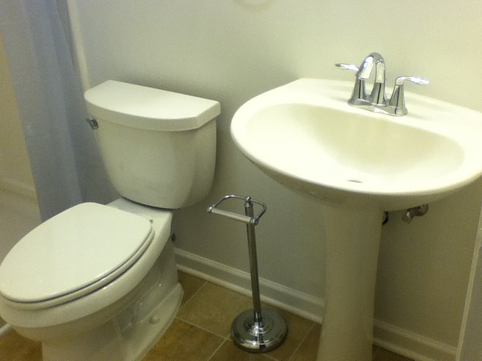 Pedestal Sink and Toilet