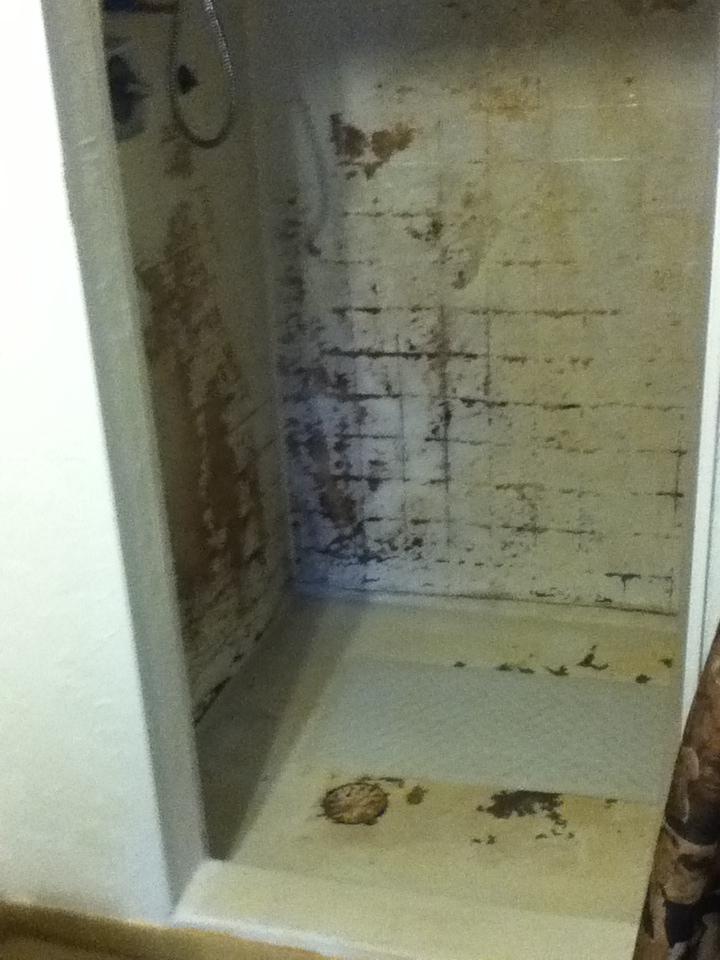 Water Damage Shower