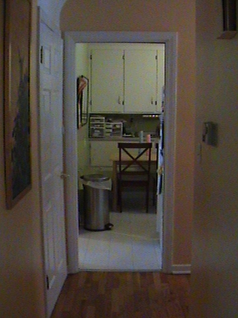Entryway into kitchen before hallway wall was removed.